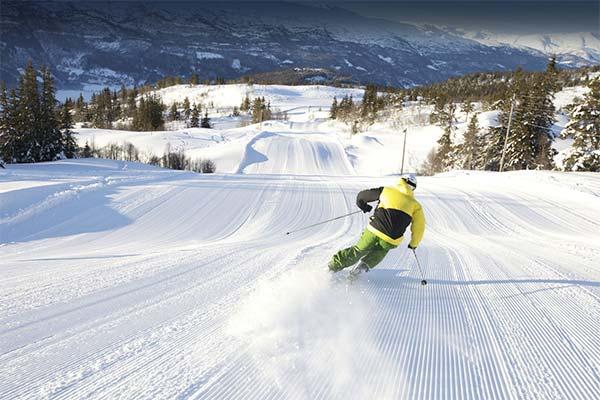 Сонник кататися на лижах: до чого сниться і що означає сон про катання на лижах