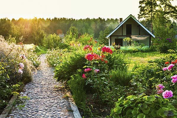 Сонник сад: до чого сниться і що означає сон про сад
