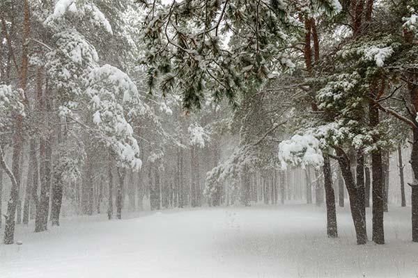 Сонник снігопад: до чого сниться і що означає сон про снігопад