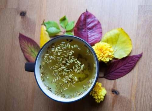 Чай з фенхелем