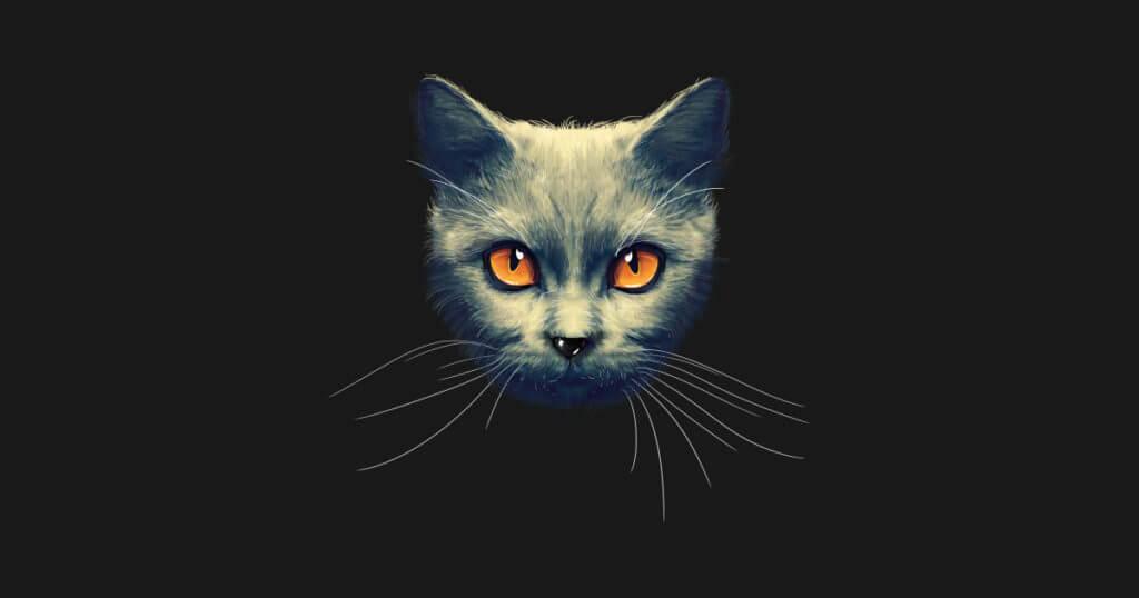 Чому кіт повинен обов'язково жити в будинку? Ви здивуєтеся ...