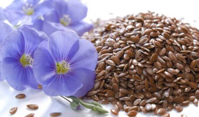 Насіння льону для схуднення застосування