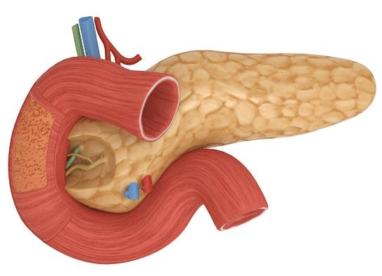 Як лікувати панкреатит і чим