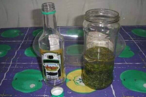 Настоянки чистотілу на горілці
