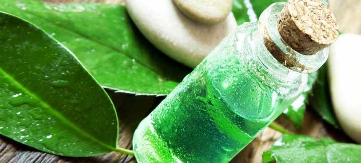 Як правильно застосовувати олію чайного дерева для відбілювання зубів?