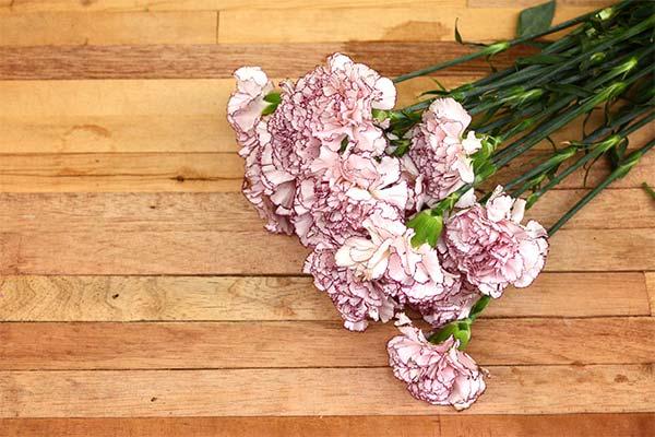Сонник букет квітів: до чого сниться і що означає сон про букет квітів