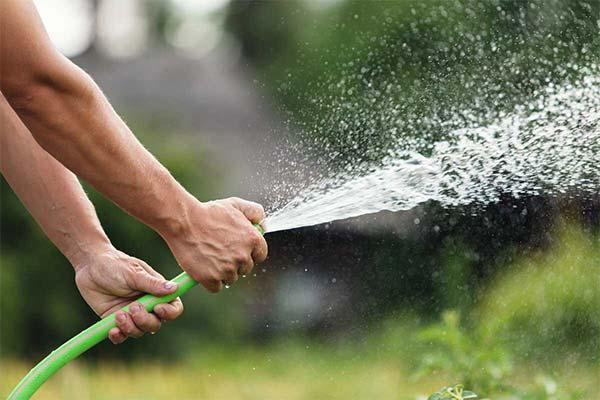 Сонник облили водою: до чого сниться і що означає обливання водою