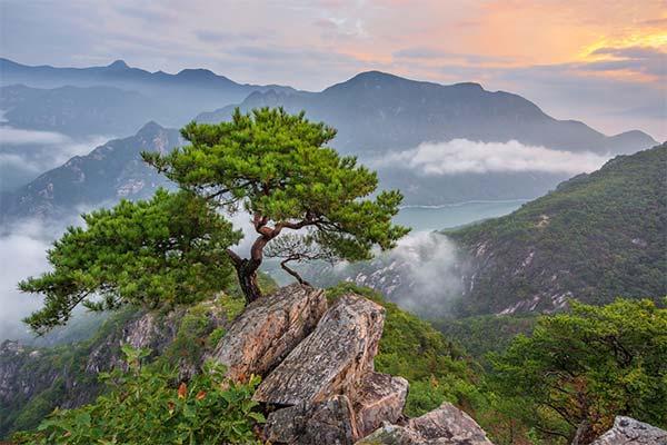 Сонник пейзаж: до чого сниться і що означає сон про пейзаж