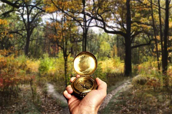 Сонник заблукати: до чого сниться і що означає уві сні заблукати