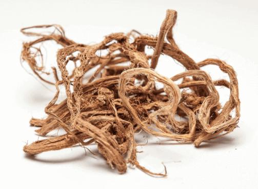 Ведмежий корінь в лікуванні жіночих і чоловічих захворювань
