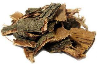 Застосування та корисні властивості дубової кори