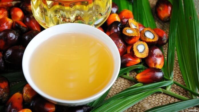 Пальмова олія: користь і шкода