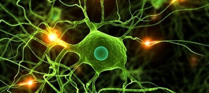 Рідкісна патологія хвороба рухового нейрона