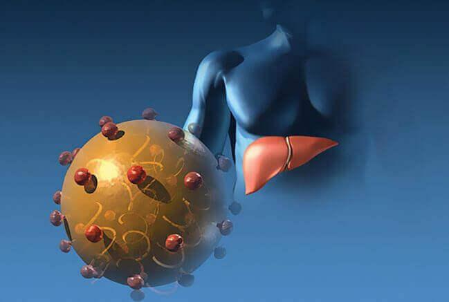 Парентеральний гепатит (Гепатит B)