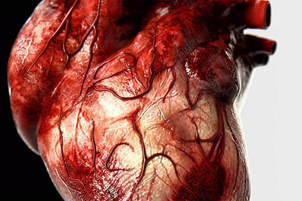 Хвороби серця і судин