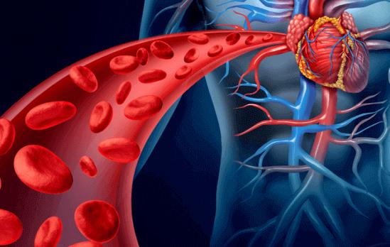 Очищення крові , лімфи народними засобами в домашніх умовах