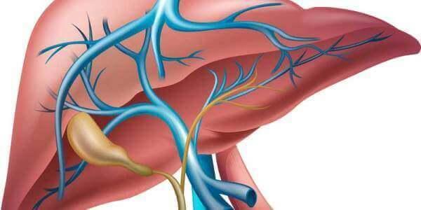 Гемангіома печінки: що це таке